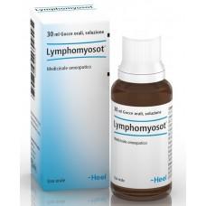 Lymphomyosot 30ml Gtt Heel